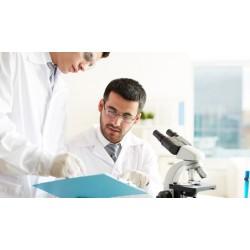 Auditoria Interna - Sistema de Gestão da Qualidade - Produtos para saúde - ABNT NBR ISO 13485:2016