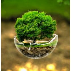 Leitura e interpretação ISO 14001:2015